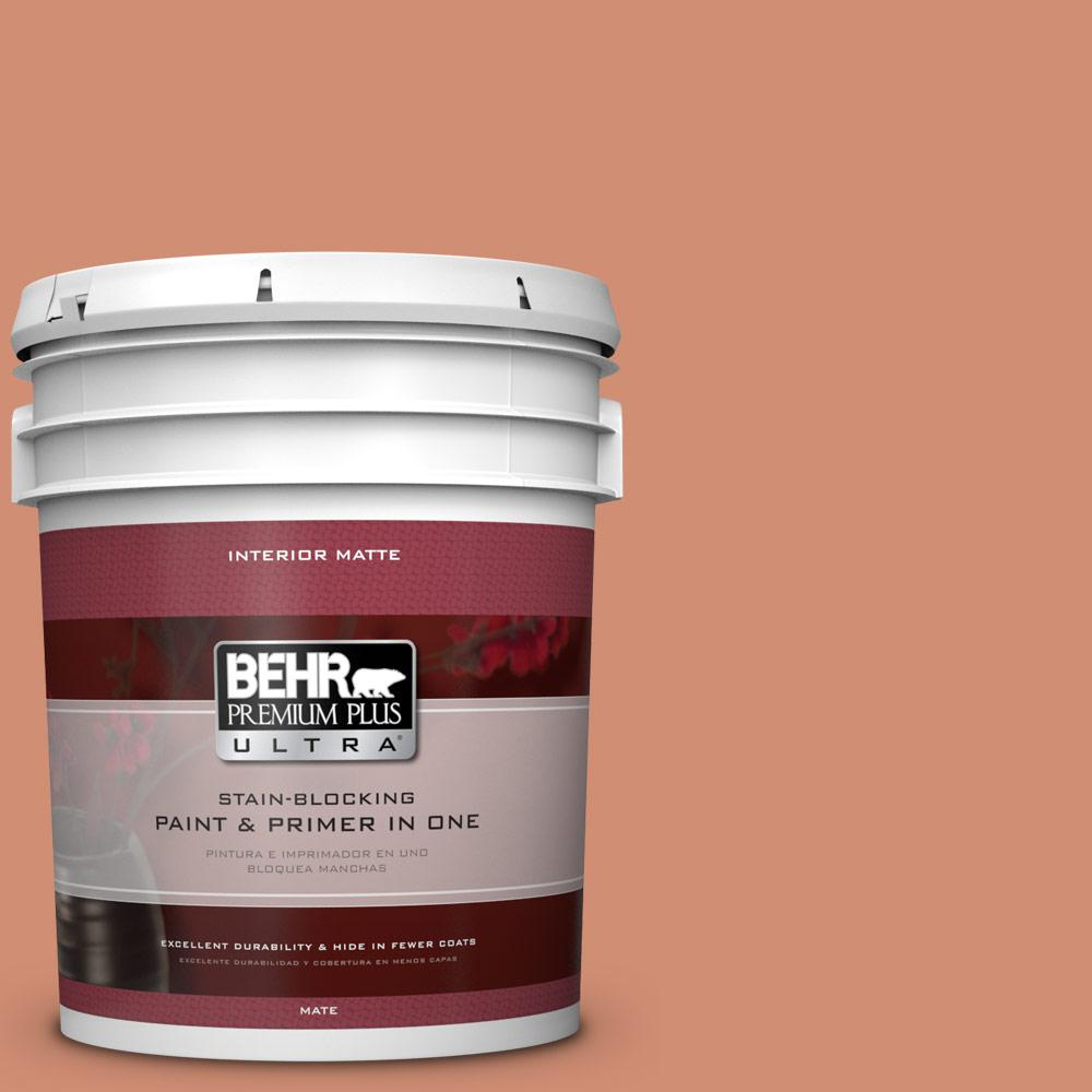 5 gal. #M200-5 Terra Cotta Clay Matte Interior Paint
