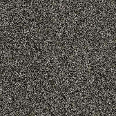 Carpet Sample - Tradeshow II - Color Stone Palace Texture 8 in. x 8 in.