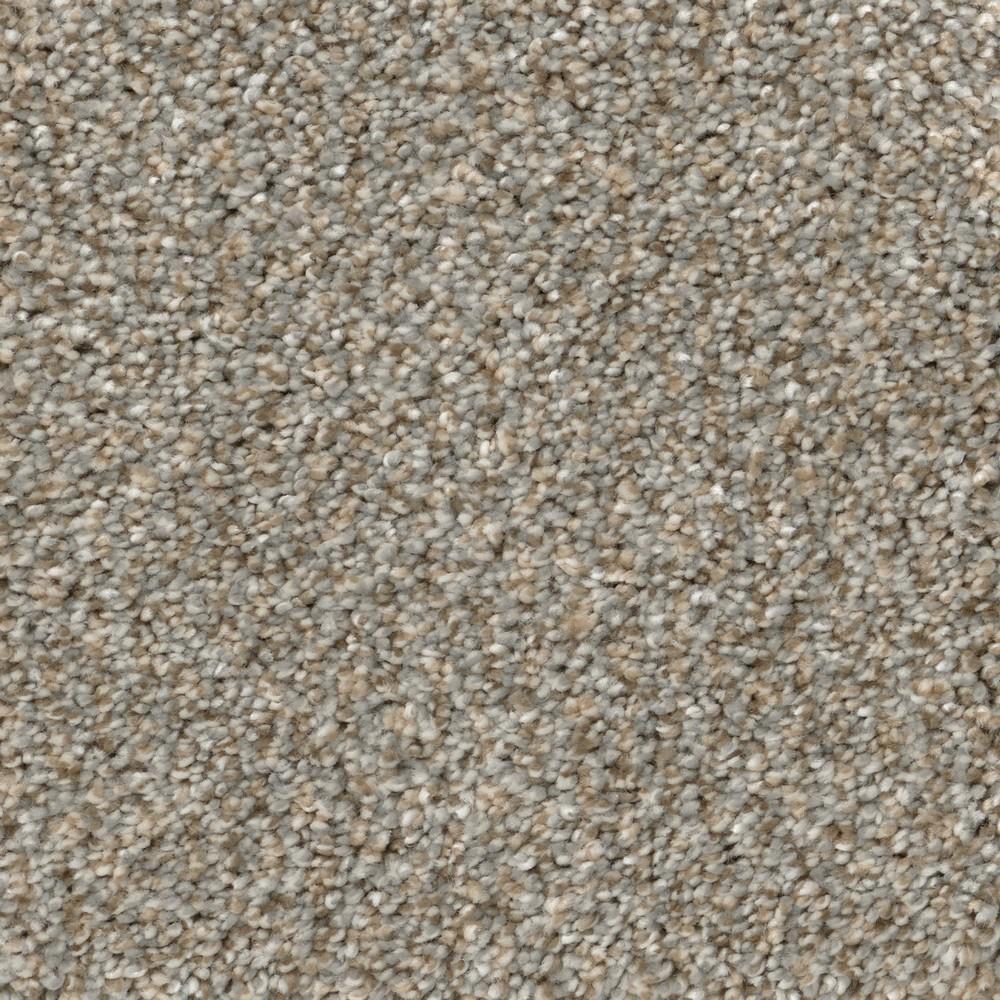 Home Decorators Collection Carpet Sample Clareview Color