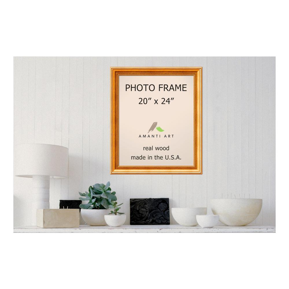 Amanti art townhouse 20 in x 24 in gold picture frame dsw1385307 amanti art townhouse 20 in x 24 in gold picture frame jeuxipadfo Choice Image