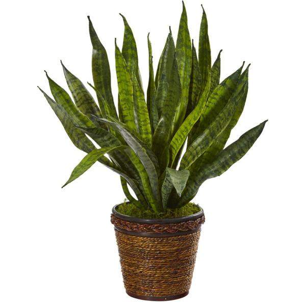 23 in. Sansevieria Artificial Plant in Basket
