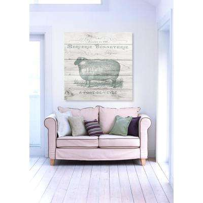 """20 in. x 20 in. W """"Sheep Clothing"""" Printed Framed Canvas Wall Art"""