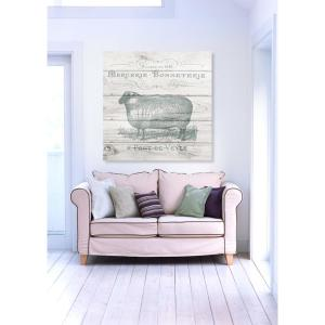 The Oliver Gal Artist Co. 24 inch x 24 inch W 'Sheep Clothing' by The Oliver Gal Artist Co. Printed Framed... by The Oliver Gal Artist Co.
