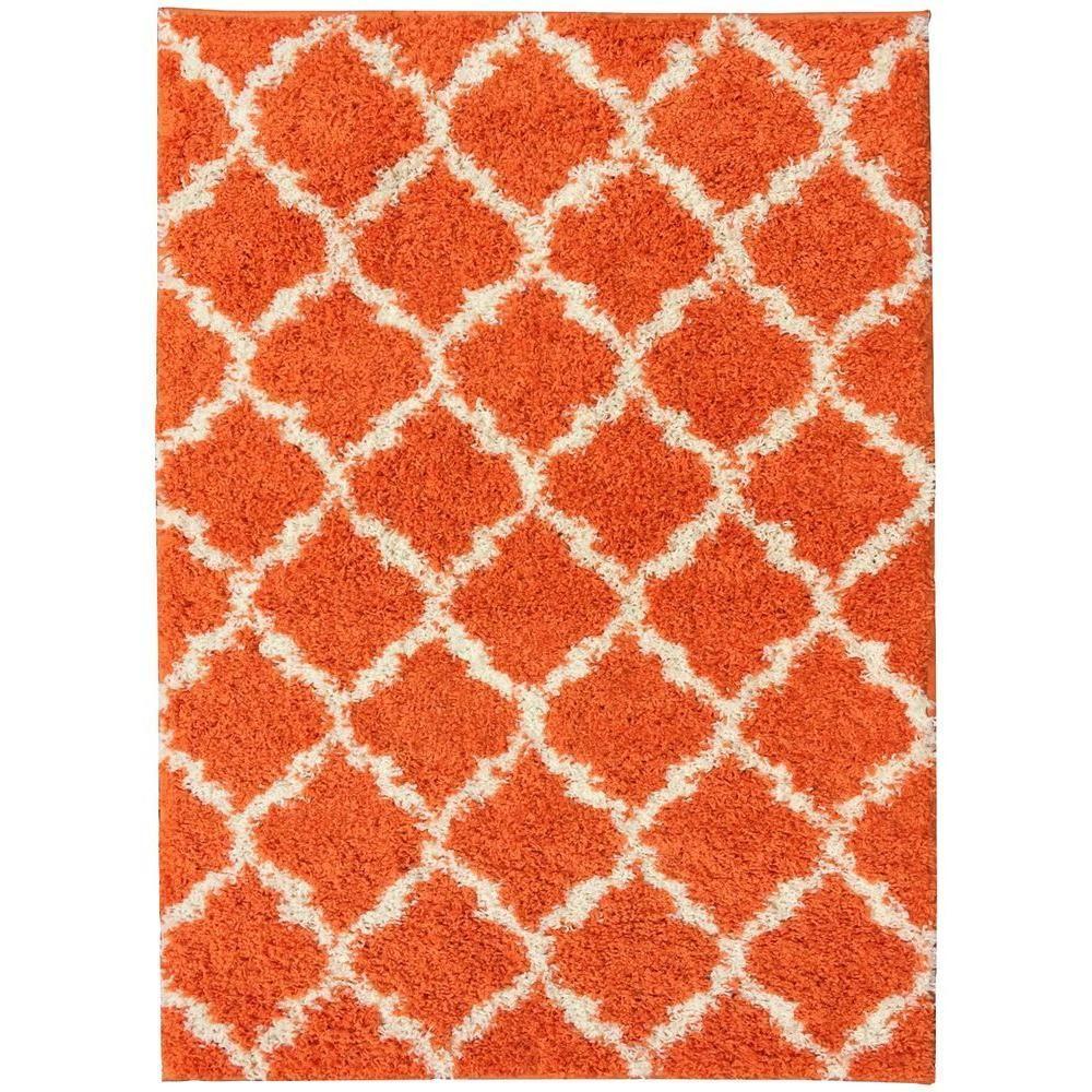 Berrnour Home Plush Moroccan Trellis Design Orange 5 Ft. X