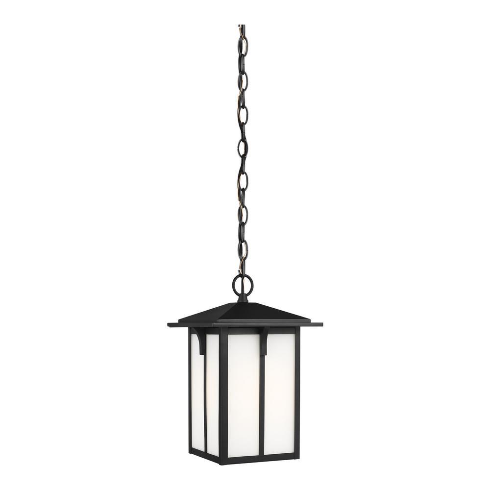 Tomek 1-Light Black Outdoor Pendant Light