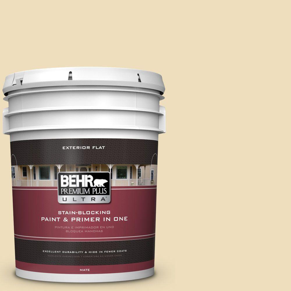 BEHR Premium Plus Ultra 5-gal. #380E-3 Satin Souffle Flat Exterior Paint