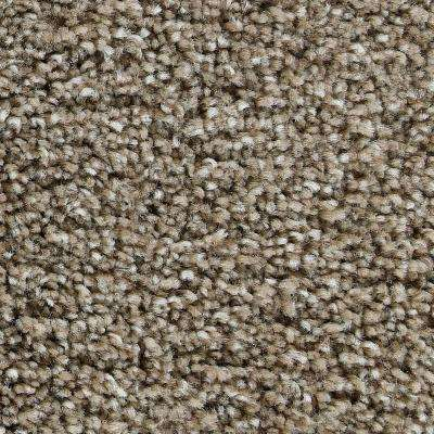 Carpet Sample - Greenlee II - In Color Country Road 8 in. x 8 in.