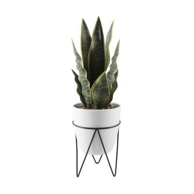 15.25 in. H Faux Snake Plant in 4.75 in. White Pot on Black Metal Stand