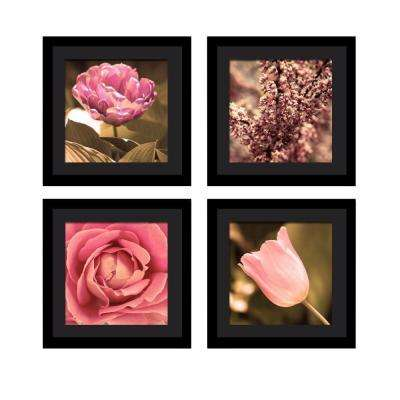 "Four 10 in. x 10 in. ""Beauty"" by Neeva Kedem Framed Printed Wall Art"