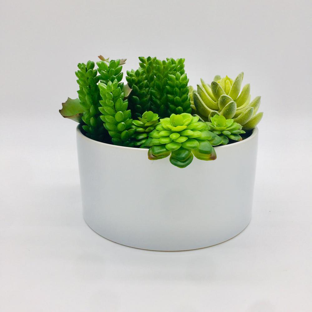 Faux succulents with white ceramic planter