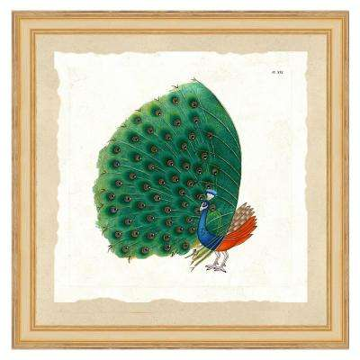 """""""Exotic peacock I"""" Framed Archival Paper Wall Art (24 in. x 24 in. Full Size)"""