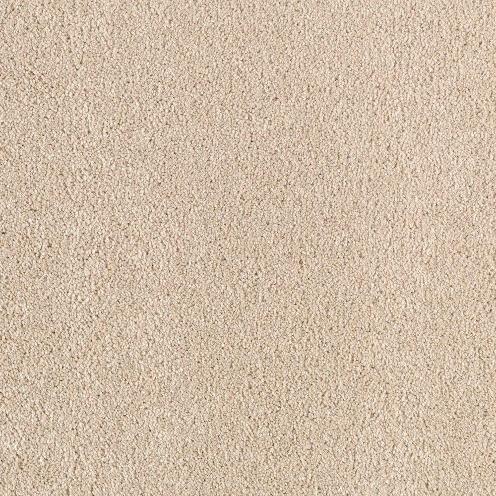 Platinum Plus Stunning - Color Aztec 12 ft. Carpet