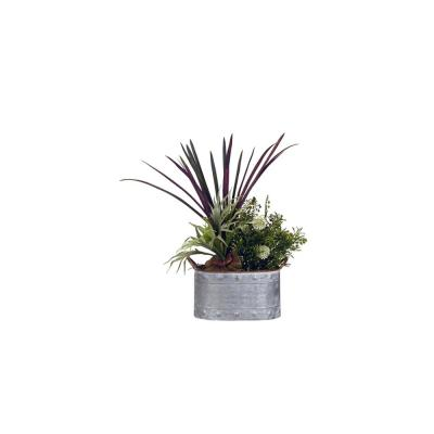Indoor Mini Staghorn Fern and Areca Grass in Oval Metal Planter