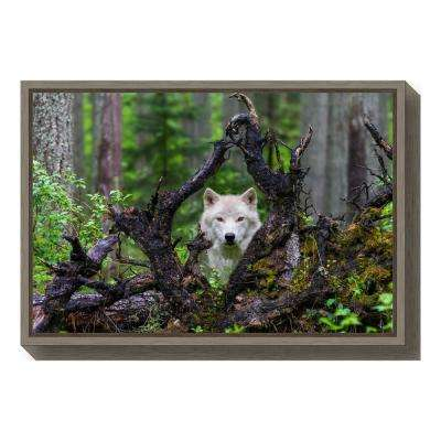 """Wolf"" by Mike Centioli Framed Canvas Wall Art"