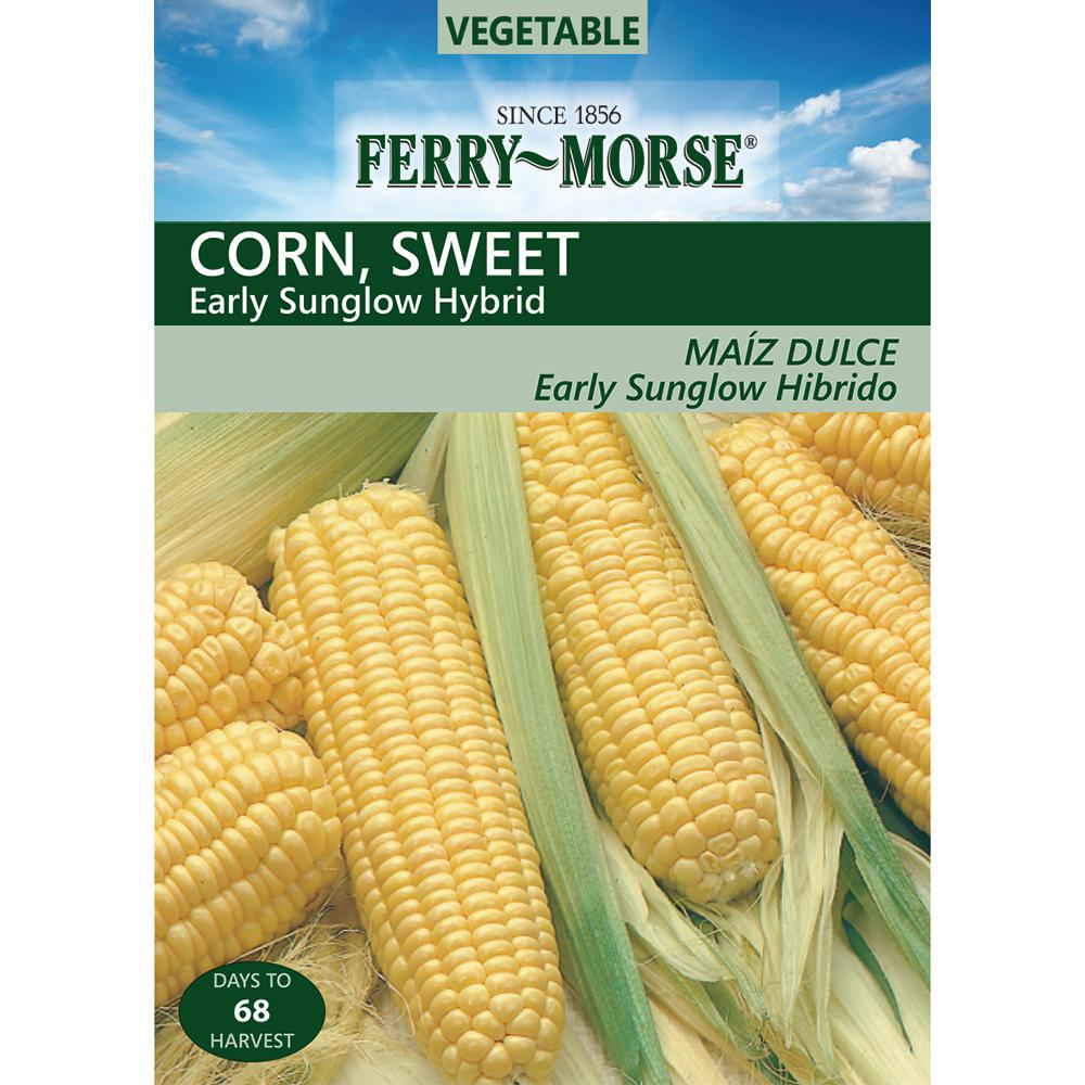 Ferry Morse Corn Sweet Early Sunglow Seed 1965 The Home