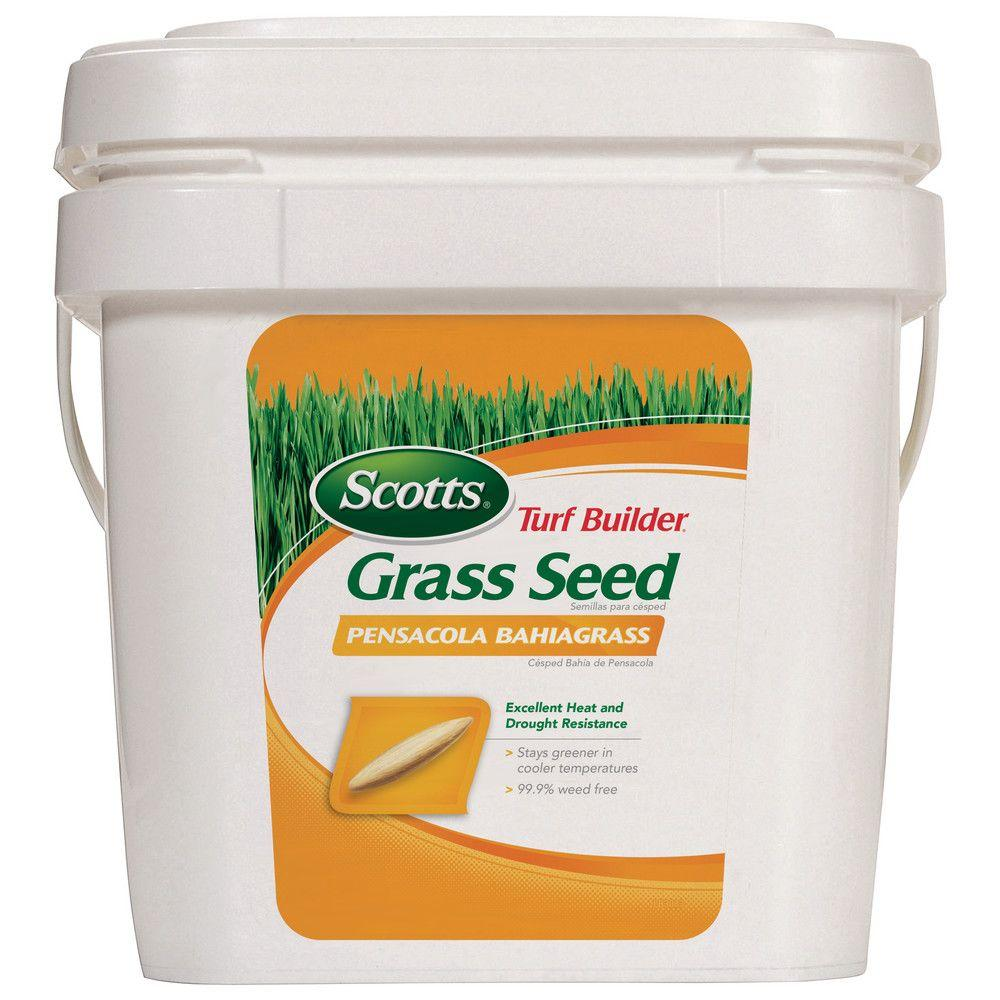 Turf Builder 5 lb. Bahia Pensacola Grass Seed
