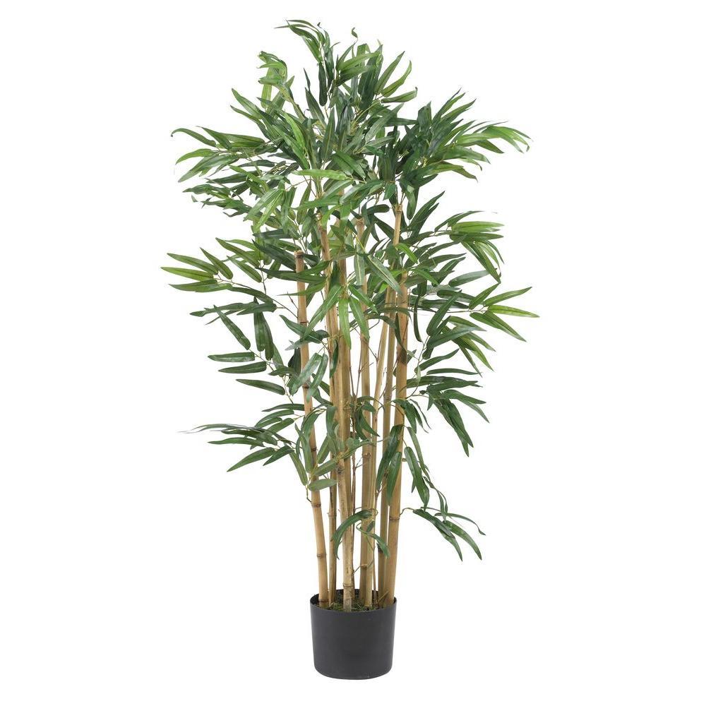 3 ft. Mutli Bambusa Bamboo Silk Tree