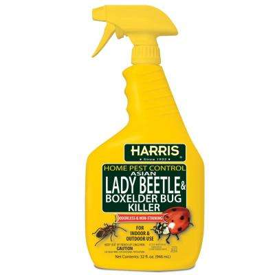 32 oz. Asian Lady Beetle and Box-Elder Bug Killer