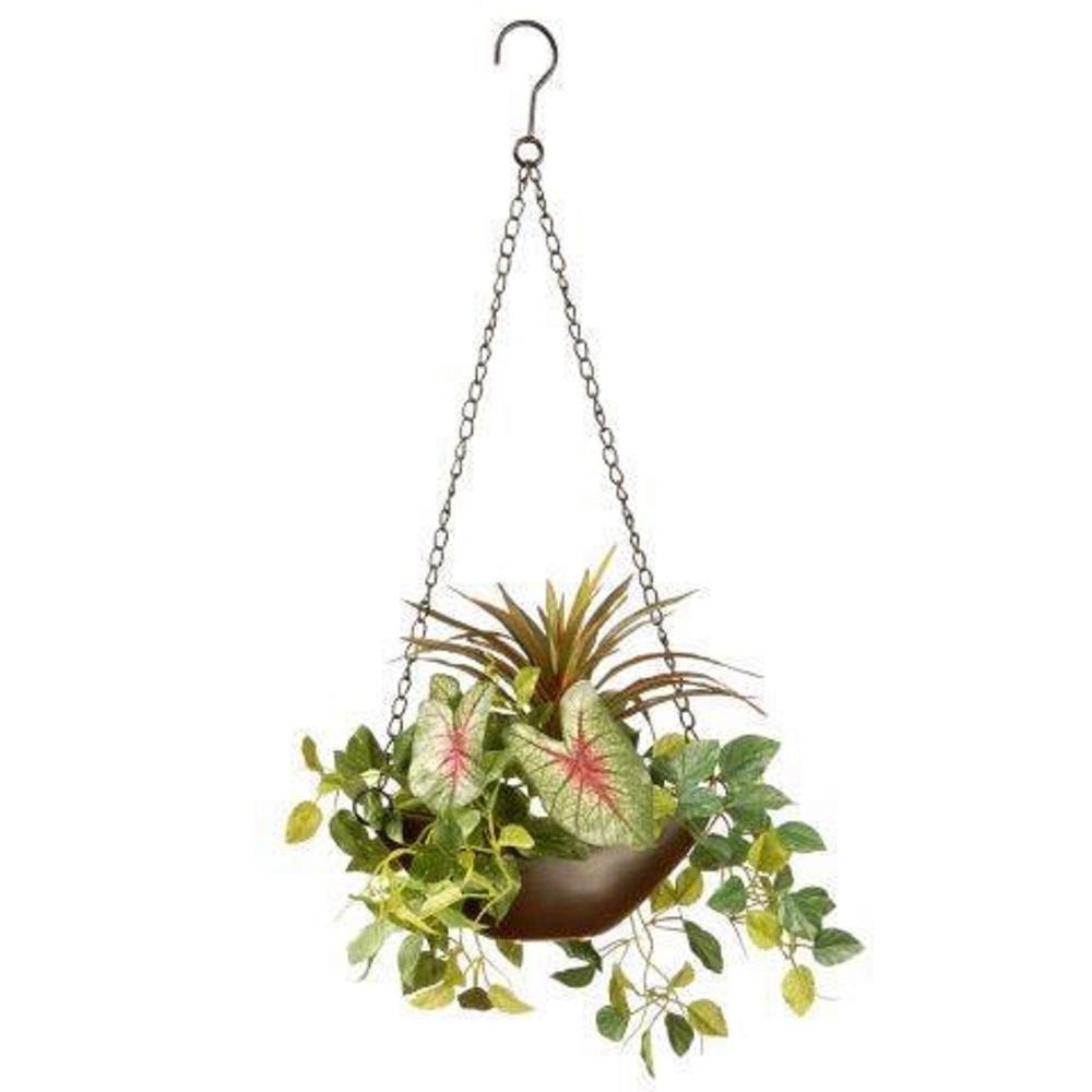 Orted Greens Hanging Basket
