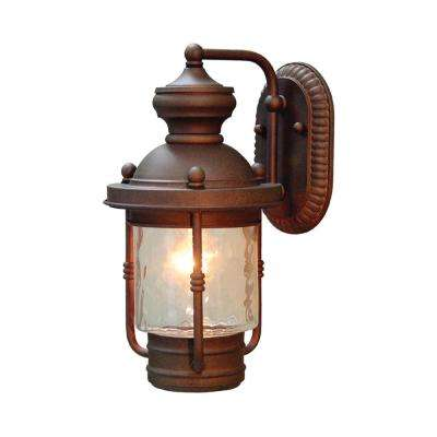 1-Light Burnished Bronze Outdoor Wall Mount