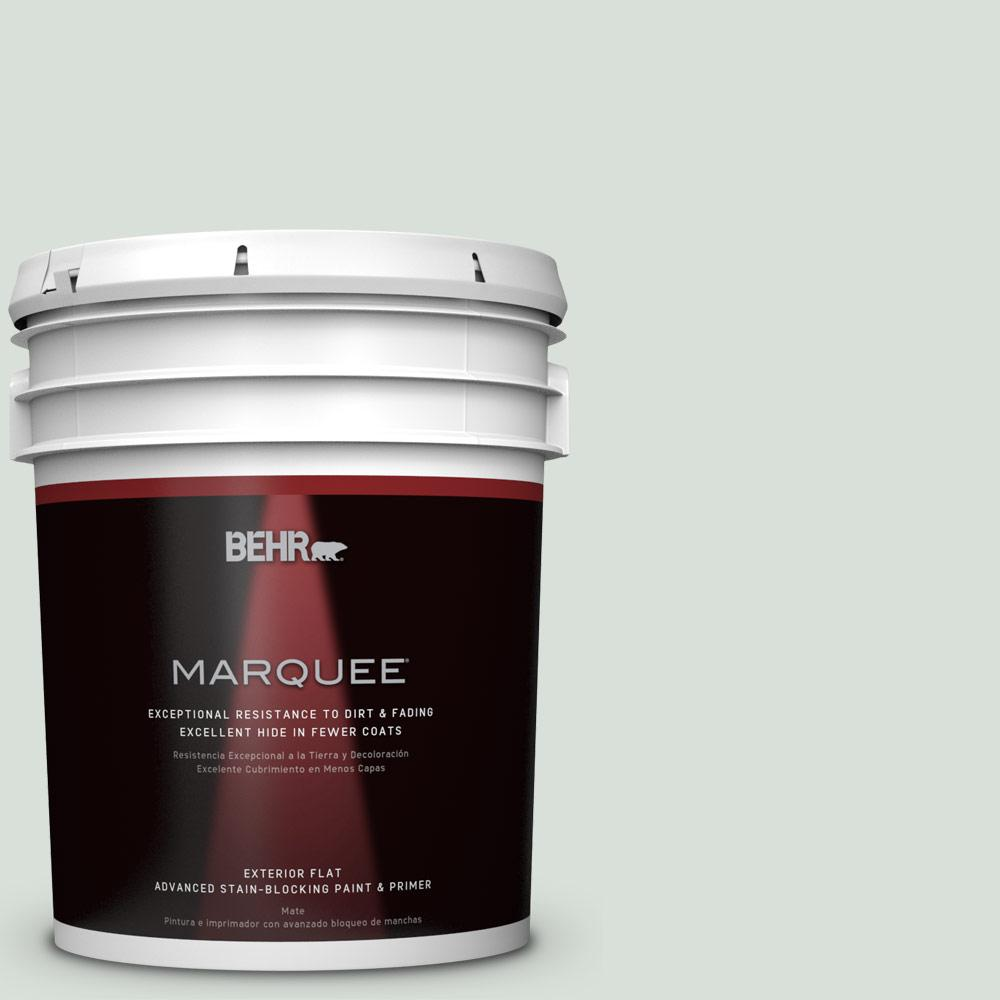 5-gal. #N420-1 Juniper Breeze Flat Exterior Paint