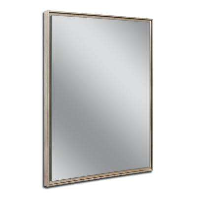 24 in. W x 30 in. H Champagne Studio Float Wall Mirror