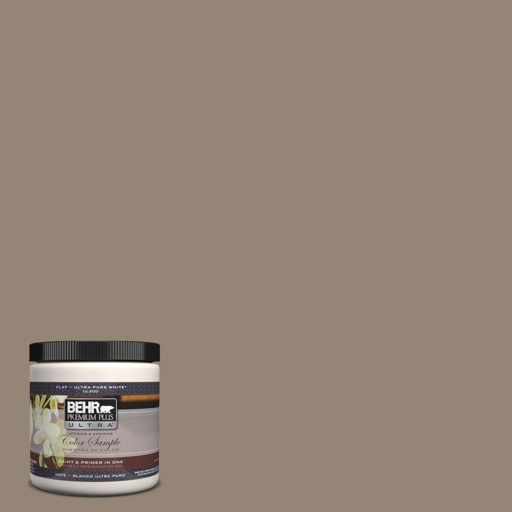 Ul160 20 Ethiopia Matte Interior Exterior Paint And Primer In One Sample