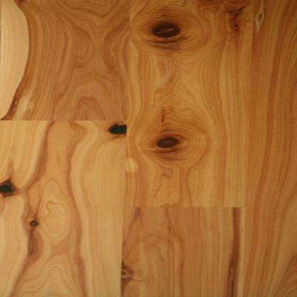Take Home Sample-Classic Hardwoods AUSR Cypress Natural Engineered Hardwood Flooring - 5.5 in. x 8.5 in.