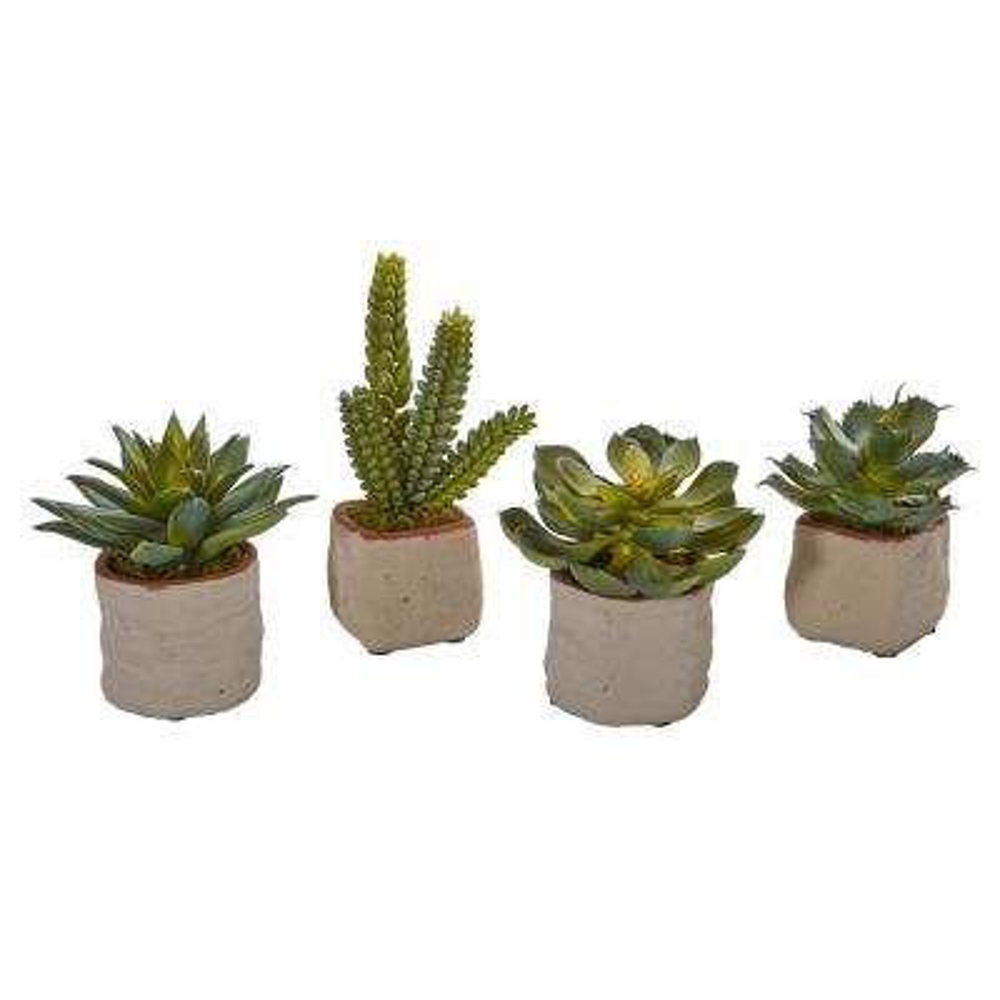 Indoor Mixed Succulent Artificial Plant (Set of 4)