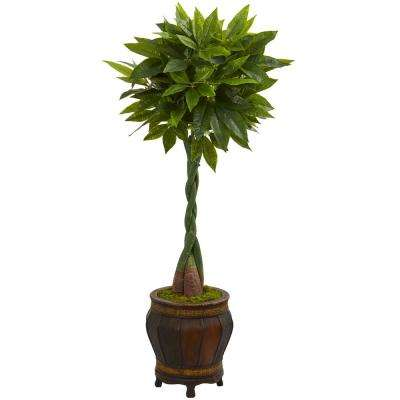 Real Touch 5 ft. High Indoor Money Artificial Tree in Decorative Planter