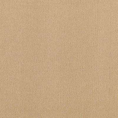 Carpet Sample - Core Competency - Color Cake Batter Texture 8 in x 8 in