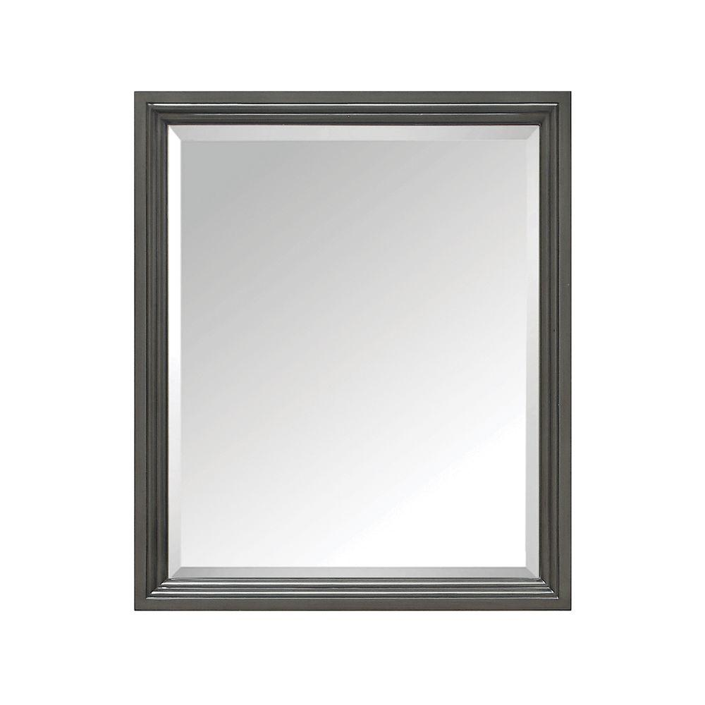 Thompson 28 in. W x 33 in. H Single Framed Mirror