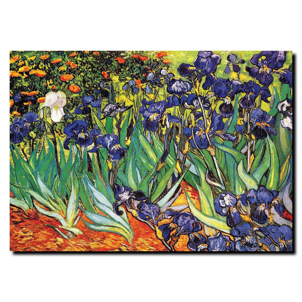 35 in. x 47 in. Irises at Saint-Remy Canvas Art