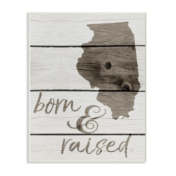 Stupell Industries 10 in. x 15 in. ''Born And Raised Illinois''