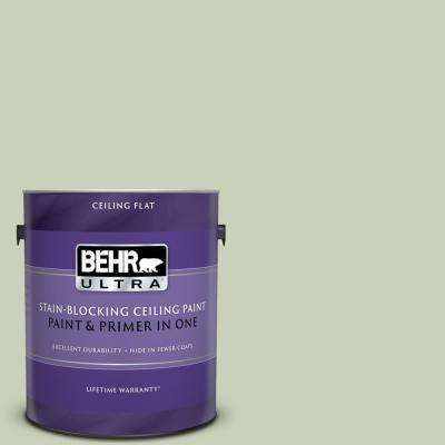 1 gal. #PPU10-09 Chinese Jade Ceiling Flat Interior Paint and Primer in One