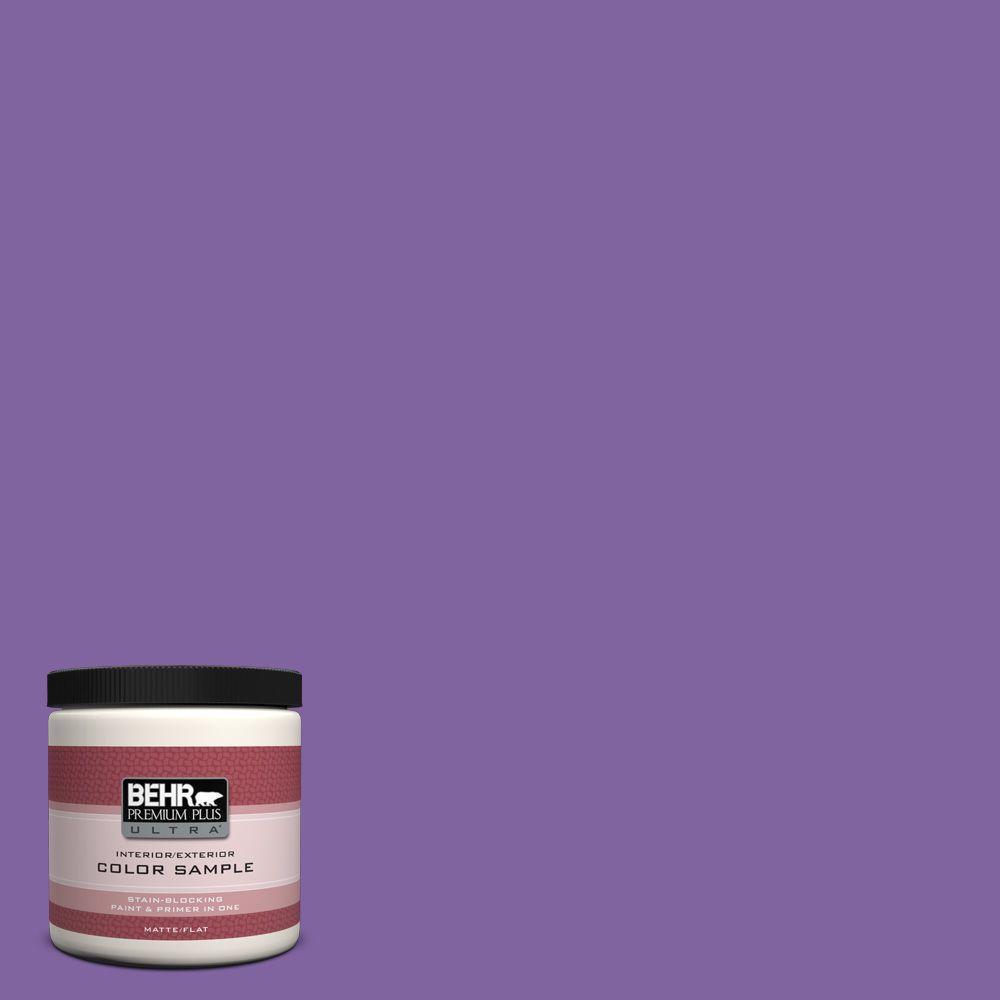 8 oz. #PPU16-3 Purple Paradise Interior/Exterior Paint Sample