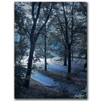 24 in. x 32 in. Snow Flakes Canvas Art
