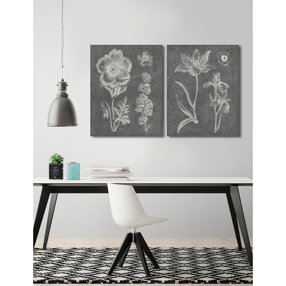 28 in. x 22 in. 'Eden Spring II Gray' by Wild Apple Fine Art Wrapped Canvas Print Wall Art