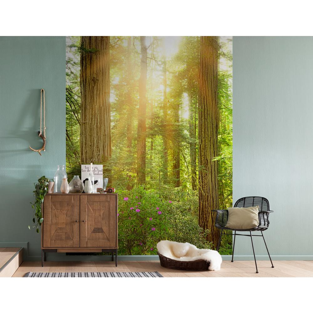 Komar redwood wall mural xxl2 044 the home depot for Decor mural xxl