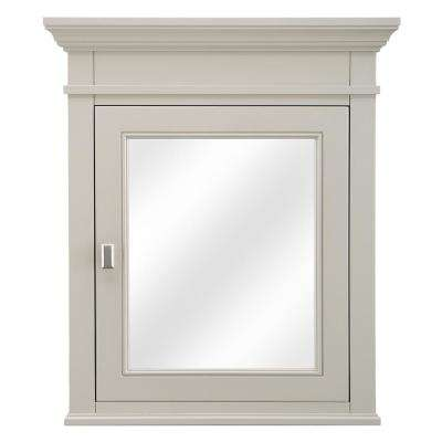 Braylee 24 in. W x 28 in. H Surface-Mount Mirrored Medicine Cabinet in Rainy Day