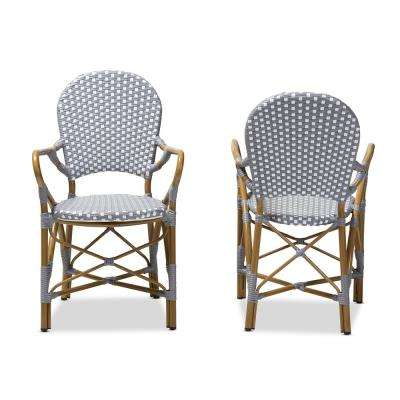 Seva Gray and White Dining Chair (Set of 2)