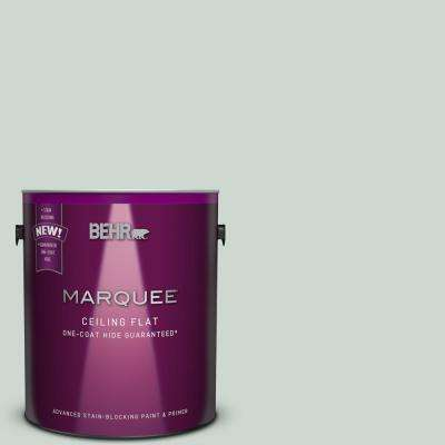 1 gal. #MQ3-21 Tinted to Breezeway One-Coat Hide Flat Interior Ceiling Paint and Primer in One