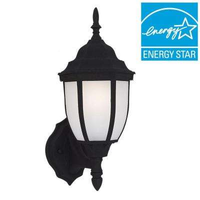 Bakersville 1-Light Black Outdoor Wall Mount Lantern