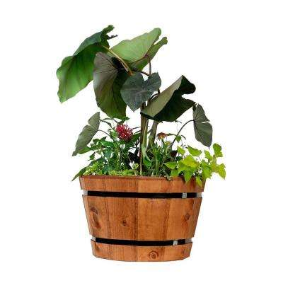 20 in. Dia Heartwood Barrel Tub