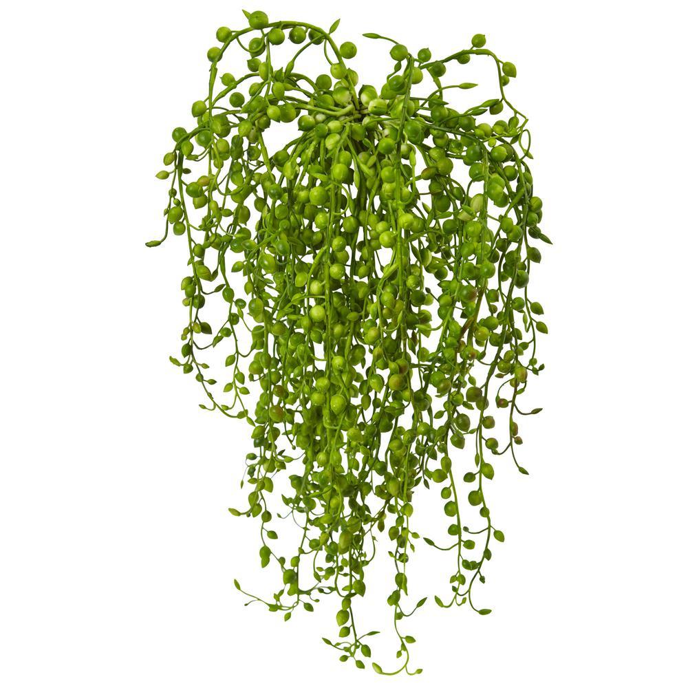 Senecio Artificial Succulent Plant (Set of 3)