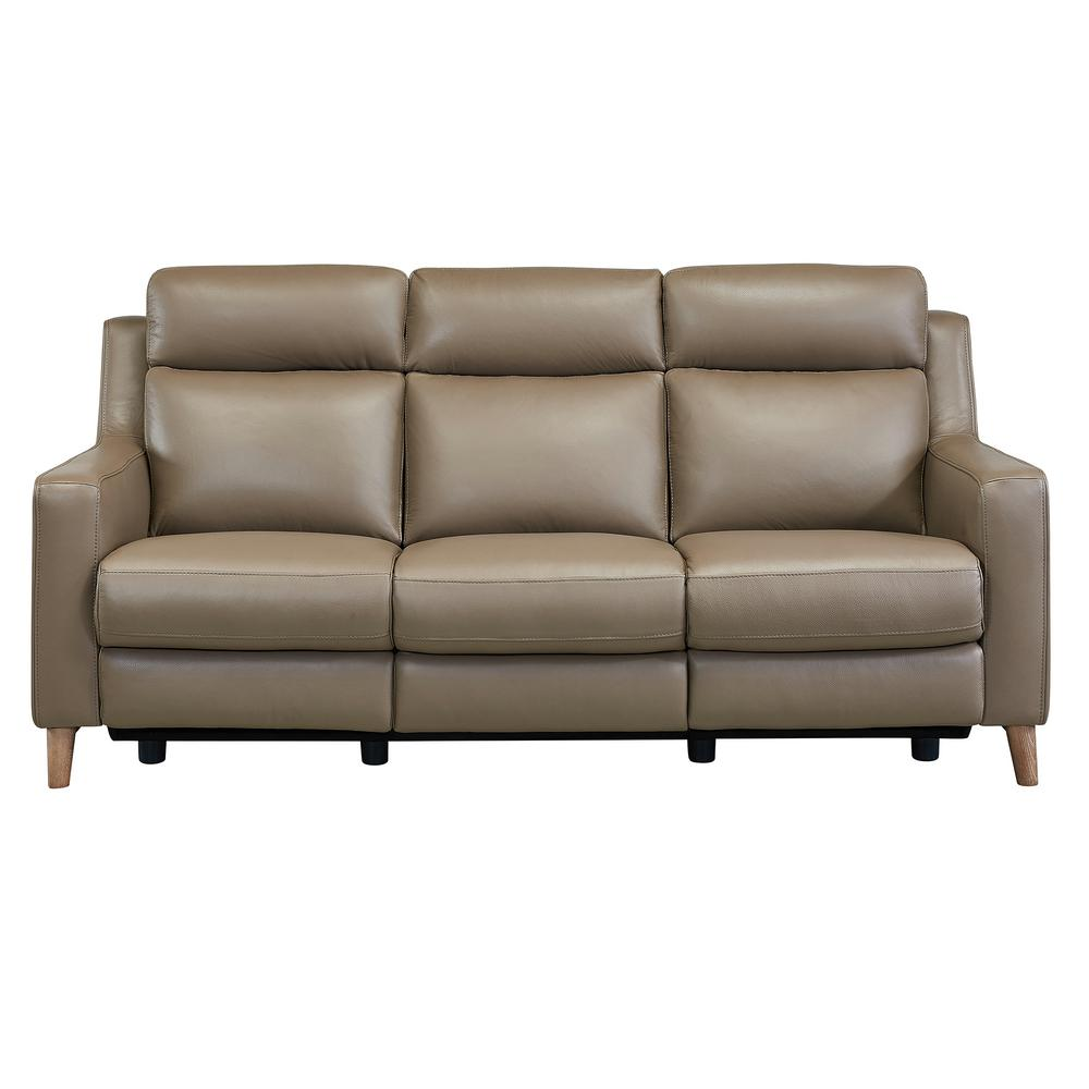 Armen Living Wisteria Contemporary Sofa in Light Brown Wood and Taupe  Genuine Leather