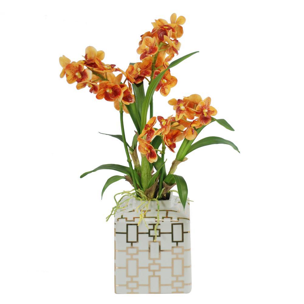 20 in vanda orchids in fancy ceramic vase orange sdp224 or the vanda orchids in fancy ceramic vase orange reviewsmspy