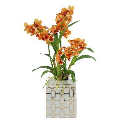 20 in. Vanda Orchids in Fancy Ceramic Vase, Orange