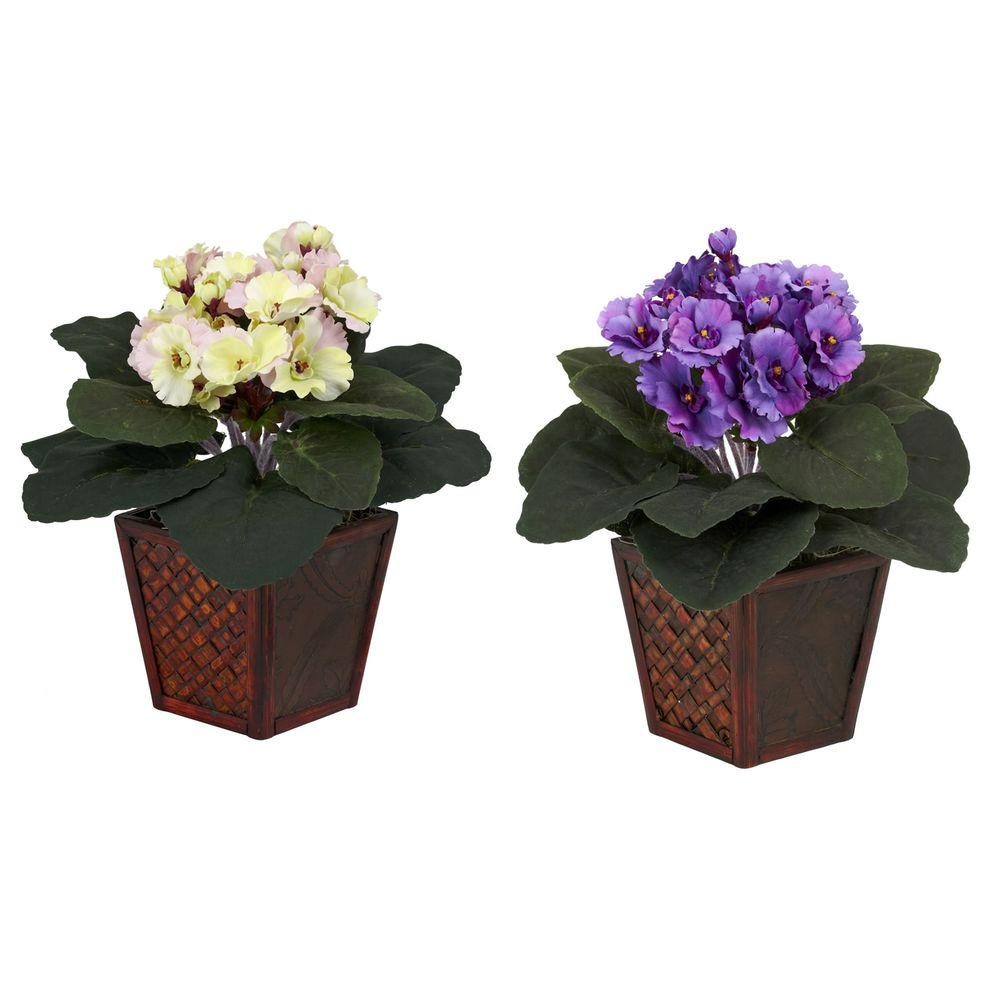 10 in. H Assorted African Violet Silk Plants with Vase, Set