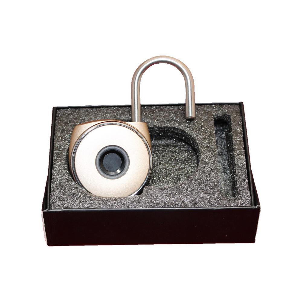 Biometric Padlock in Rose Gold